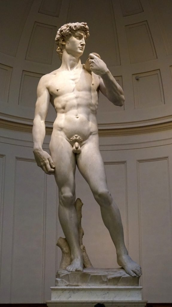 I Medici: il David, Michelangelo